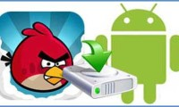 backup-angry-birds