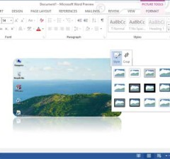 Word-2013-Picture-Tool