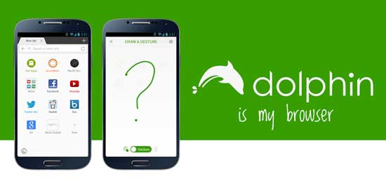 Dolphin-Browser-For-Android